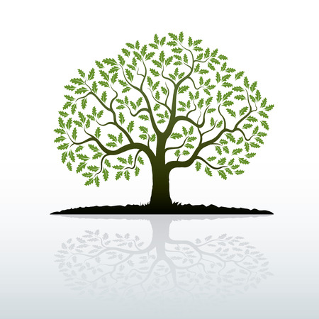 Illustration pour Oak Tree. Vector Illustration. - image libre de droit