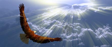 Foto de Eagle in flight above tyhe clouds - Imagen libre de derechos