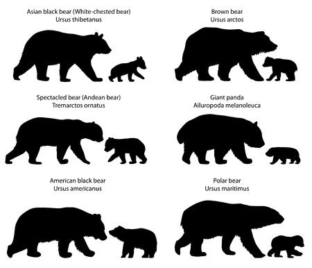 Ilustración de Collection of silhouettes of different species of bears and bear-cubs - Imagen libre de derechos