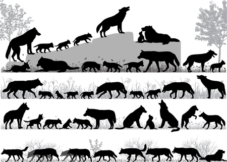 Illustration pour Silhouettes of wolves and its cubs outdoors - image libre de droit