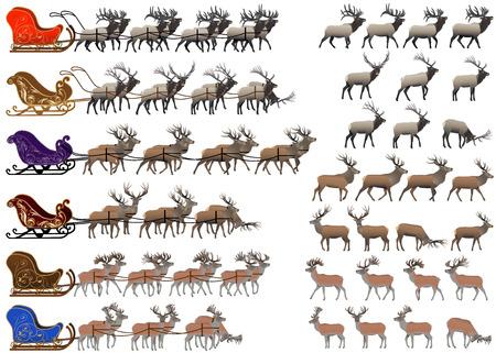 Ilustración de Collection of different species of red deer and deer sleds - Imagen libre de derechos