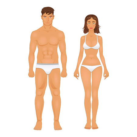 Illustrazione per simple stylized illustration of a healthy body type of man and woman in retro colors - Immagini Royalty Free
