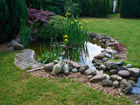 Foto de Beautiful classical garden fish pond surrounded by grass gardening background - Imagen libre de derechos