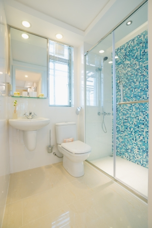 the bathroom with modern style