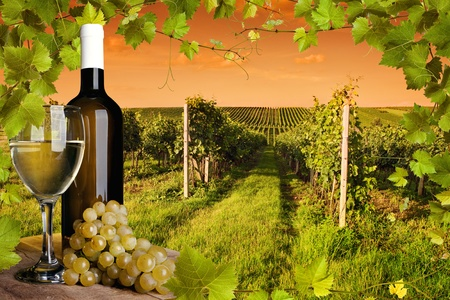 Photo pour Bottle and glass of wine and the vineyards of sunset - image libre de droit