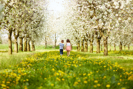Foto de Boy goes with the girl in a blossoming orchard - Imagen libre de derechos