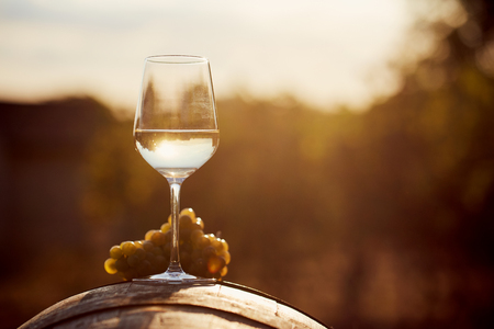Photo pour Glass of white wine with grape at sunset - image libre de droit