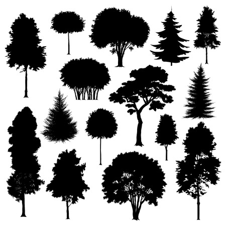 Ilustración de Set of silhouettes of trees isolated on white. Vector illustration - Imagen libre de derechos