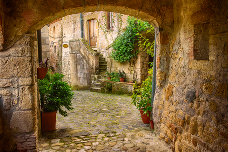 Photo pour Narrow street of medieval tuff city Sorano with arch, green plants and cobblestone, travel Italy background - image libre de droit