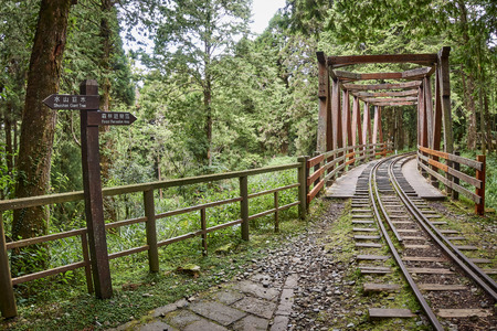 Photo for One of the tourist attractions of Alishan is the narrow-gauge railway - Royalty Free Image