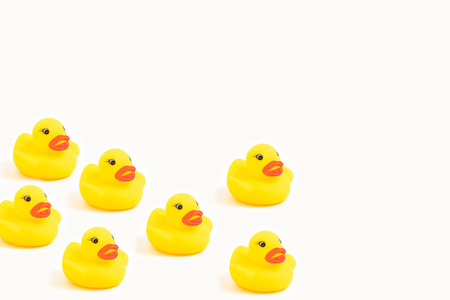 Photo for yellow rubber ducks on white - Royalty Free Image
