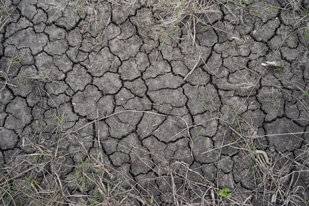 Photo for Dry Ground Background - Royalty Free Image