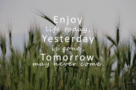 Photo pour Inspirational Quotes - Enjoy life today, yesterday is gone, tomorrow may never come. - image libre de droit