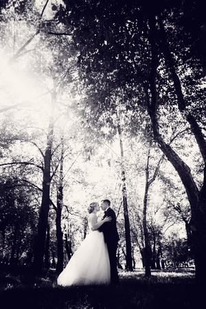 Foto de couple bride and groom on the background of the park's trees. - Imagen libre de derechos