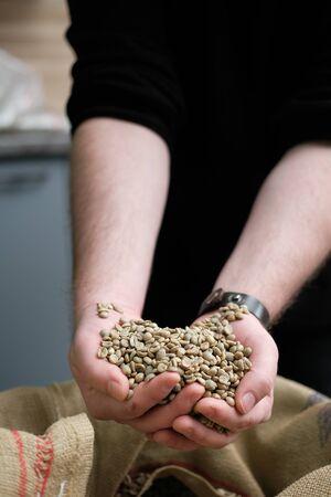 Foto de green unroasted coffee beans in hands on burlap background. coffee roasting process - Imagen libre de derechos