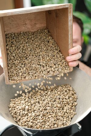 Foto de green unroasted coffee beans spill out into a large pot for roasting. coffee roasting process - Imagen libre de derechos