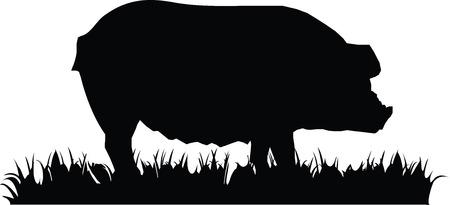 Ilustración de Vector illustration. Pig icon isolated on white background. - Imagen libre de derechos