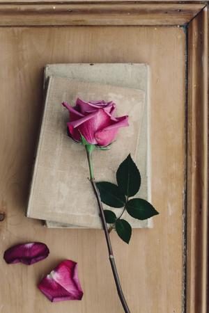 Foto de Faded pink rose and vintage books on a wooden background - Imagen libre de derechos