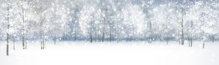 Illustration pour winter landscape, snowfall in forest  - image libre de droit