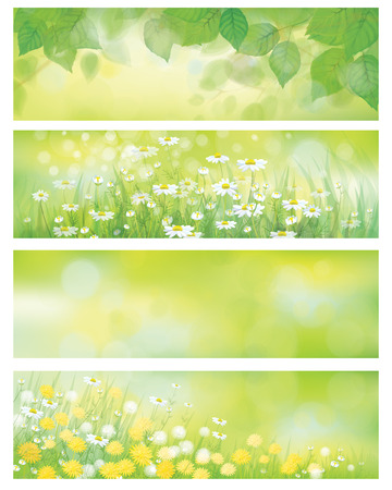 Illustration pour Vector  spring nature banners, birch  tree leaves,  dandelion and chamomile  - image libre de droit