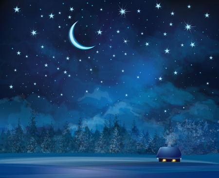 Illustration pour Vector night scene with house  on starry sky background and forest. - image libre de droit