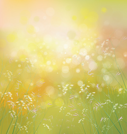 Illustration pour Vector spring  nature background. - image libre de droit