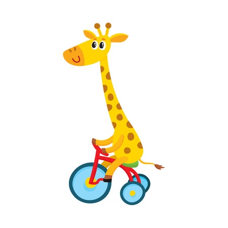 Illustration pour Cute little giraffe character riding bicycle, tricycle, cycling, cartoon vector illustration isolated on white background. Little baby giraffe animal character riding bike, bicycle, tricycle - image libre de droit