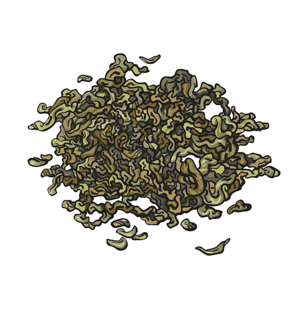 Ilustración de Hand drawn pile, heap, handful of dry, fermented green tea leaves, sketch vector illustration isolated on white background. Realistic hand drawing of dry green tea leaves - Imagen libre de derechos