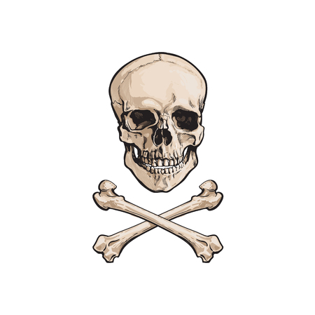 Illustration pour vector cartoon skull and cross bones isolated illustration on a white background. Jolly roger flag, pirates adventure , treasure risk and death symbol - image libre de droit