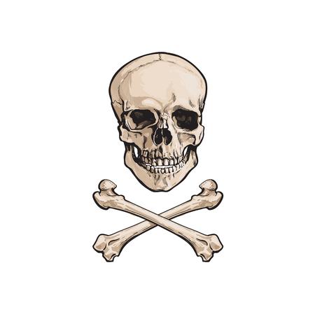 Ilustración de vector cartoon skull and cross bones isolated illustration on a white background. Jolly roger flag, pirates adventure , treasure risk and death symbol - Imagen libre de derechos
