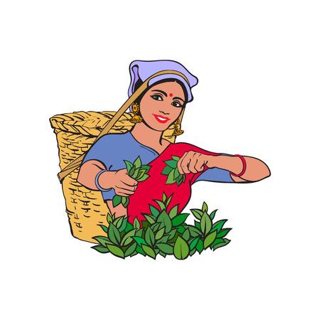 Ilustración de vector sketch cartoon indian Sri-lanka local woman collecting tea in tradition way smiling in big wicker basket. Traditionally dressed female character, hand drawn sri-lanka , india symbols - Imagen libre de derechos