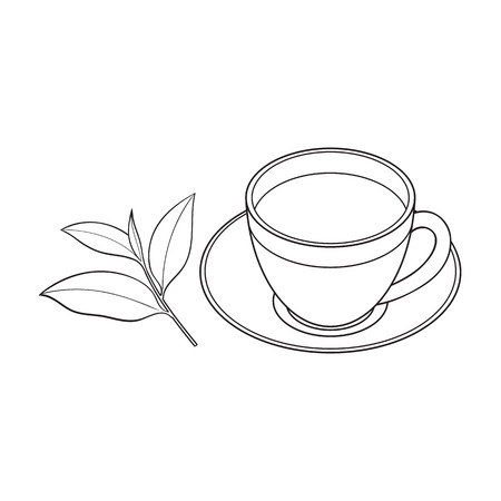Illustration for Transparent glass cup, saucer and fresh tea leaf, sketch vector illustration isolated on white background. Hand drawn glass mug and saucer set with tea leaf - Royalty Free Image