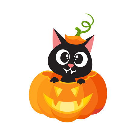Illustrazione per vector flat cartoon funny cute cat sitting at halloween scary pumpkin with gourd hat with stem on head smiling. Isolated illustration on a white background. Fancy animal concept - Immagini Royalty Free