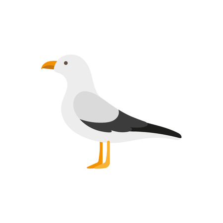 Illustration pour Side view portrait of seagull, albatross, flat style cartoon vector illustration isolated on white background. Simple flat style cartoon vector illustration of standing seagull - image libre de droit