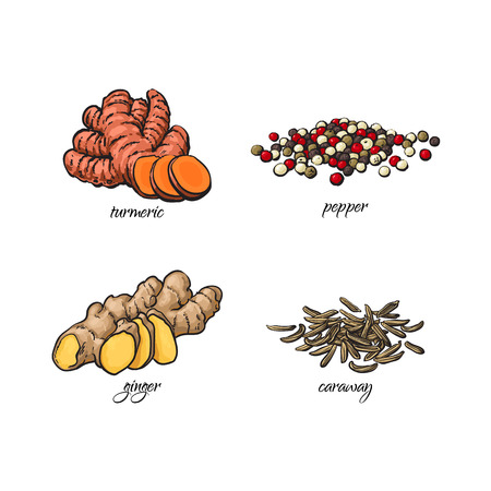 Illustration for vector flat cartoon sketch hand drawn Spices, seasoning, flavorings and kitchen herbs set. Black pepper, caraway seeds turmeric and ginger roots. Isolated illustration on a white background - Royalty Free Image