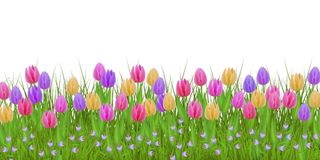 Illustration pour Green meadow grass, tulip bellflower flowers border frame, template on isolated background. Spring summer sale template for retail poster and advertising design wtih text space. Vector illustration - image libre de droit
