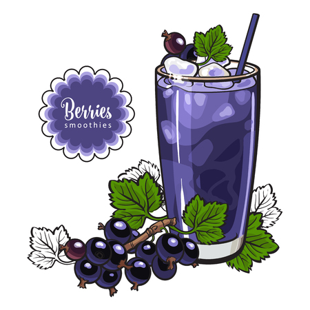 Illustration for Black currant smoothie - summer cool drink with blended fresh ripe fruits and ice in glass in sketch style isolated on white background. Healthy beverage with berries in vector illustration. - Royalty Free Image