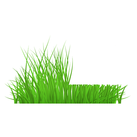 Illustration pour Vector green grass cut border for summer landscape design. Natural decoration element for parks, gardens or rural fields scenery. Lawn or plants object. Isolated illustration - image libre de droit