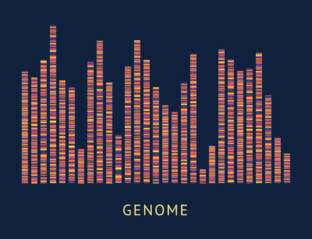 Illustration for Genome data pattern visualisation diagram. DNA sequence and chromosome mapping analytics, colorful genomic big data analysis - vector illustration on black background - Royalty Free Image