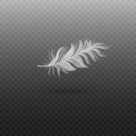 Ilustración de Realistic single flying swan feather. Soft realistic white bird feather with fluff. Vector illustration of bird feather on a transparent background. - Imagen libre de derechos