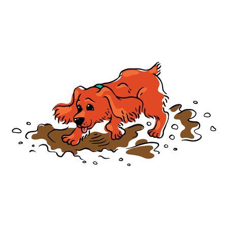 Ilustración de Funny brown spaniel dog runs and jumps through the mud and puddles. - Imagen libre de derechos