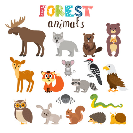 Set of cute forest animals. Woodland. Cartoon style. illustration
