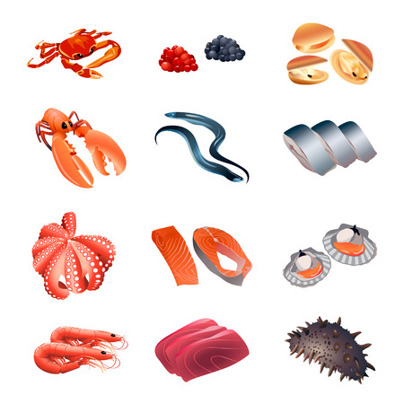 Set of colorful isolated fish and seafood for calorie table illustration