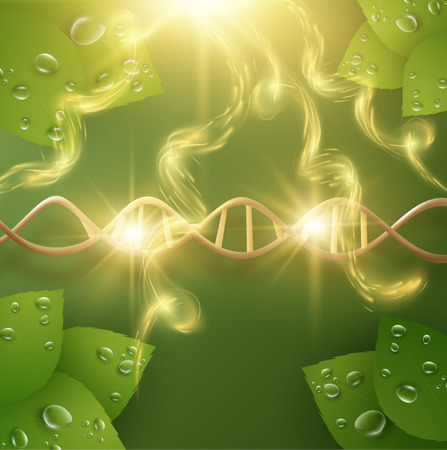 Illustration pour Organic skin care cosmetics vector background. EPS10 - image libre de droit
