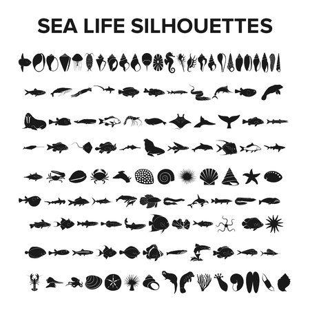 Illustration for Sea life collection - vector illustration - Royalty Free Image