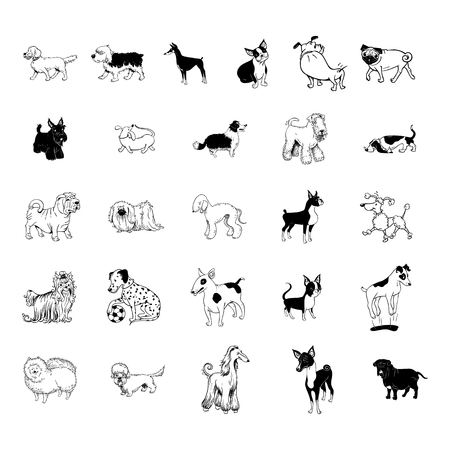 Illustrazione per dog collection clipart - Immagini Royalty Free