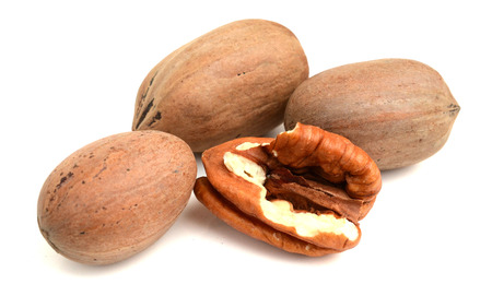 Photo pour Pecan nuts on a white background - image libre de droit