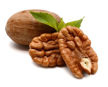 Photo pour Pecan nuts close up on white background - image libre de droit