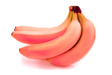 Photo pour Pink bananas isolated on white. Bunch of bananas isolated on white background. - image libre de droit