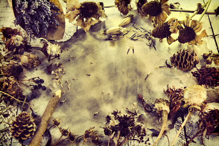 Photo for Background with lavender flowers, old paper parchment, pencil, dried herbs, seeds and plants, top view. Magic gothic ritual. Wicca, esoteric and occult background with vintage objects - Royalty Free Image